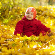 Happy toddler in autumn park — Stock Photo #15263017