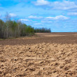 Stock Photo: Fresh tillage ploughed field