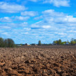 Plowing field — Stock Photo
