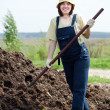 Farmer works with manure - Foto de Stock