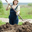 Woman scatters the manure  in  field - Stock Photo