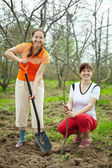Happy women planting fruit tree — Foto Stock