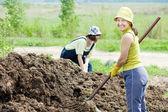 Los agricultores trabaja con estiércol en la granja — Foto de Stock