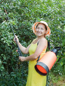 Woman spraying tree plant — Stock Photo