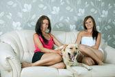 Women with labrador retriever on sofa — Stock Photo