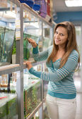 Woman near aquariums with fishes — Stockfoto