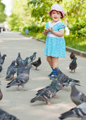 Two-year girl with doves — Stock Photo