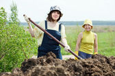Women works with animal manure — Stock Photo