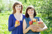 Happy women with basket of harvested apples — Stock Photo