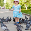 Two-year girl feeding pigeons — Stock Photo