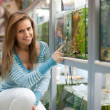 Woman chooses  fish tank - Stock Photo
