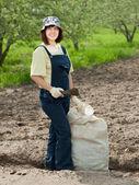 Female gardener fertilizes soil — Stok fotoğraf