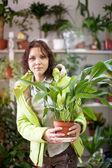 Kobieta w sklepie kwiatowy — Zdjęcie stockowe