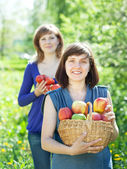 Women with harvest in orchard — Stock Photo
