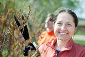 Female gardener cuts branches — Foto de Stock