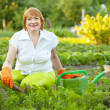 Woman working in  vegetable garden — Stock Photo