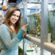Woman  in petshop — Stock Photo