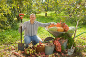 Happy man with vegetables harvest — Stock Photo
