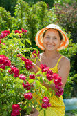 Mature woman in roses plant — Stock Photo