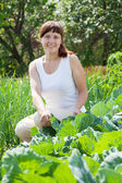 Woman in cabbage plant — Stock Photo