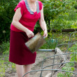 Mature woman watering tomato plant — Stock Photo