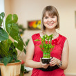 Girl with lucky bamboo plant — Stock Photo