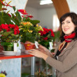 Stock Photo: Womin flower shop