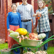 Man and two women with harvest in garden — Stock Photo