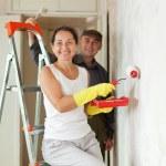 Mature woman and man making repairs — Stock Photo #18202381