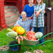 Man and two women with vegetables in garden — Stock Photo #18202683