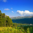 ������, ������: Mountains landscape with cedar forest