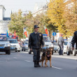 Policemen with dogs in carnival procession - Stock Photo