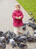 Menina de dois anos alimentando pombos — Fotografia Stock