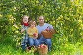 счастливые родители и ребенок в саду — Стоковое фото