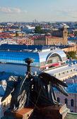 Bovenaanzicht van sint-petersburg van kathedraal — Stockfoto