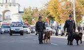 Polizisten mit hunden im karneval prozession — Stockfoto