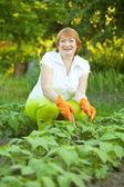 Woman working in field — Stock Photo