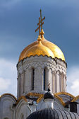 Domes of Assumption cathedral at Vladimir — Стоковое фото