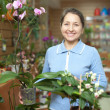 Happy mature woman  in flower store — Stock Photo