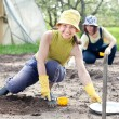 Women sows seeds in soil — Stock Photo #23477155