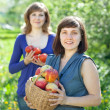 Happy women with harvest — Stock Photo #23477377
