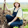 Stock Photo: Farmer works with manure