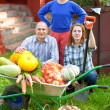 Stock Photo: Family with vegetables harvest