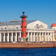 View of St. Petersburg.  Spit of Vasilievsky Island - ストック写真