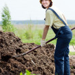 Stock Photo: Womworks with animal manure