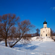 Church of the Intercession on the River Nerl — Stock Photo #23478787