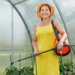 Gardener working with garden spray — Stock Photo #23478883