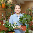 Stock Photo: Happy womin flower store