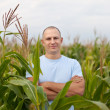 Stock Photo: Agriculturist in field of corn
