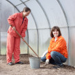 Women works at greenhouse - Foto de Stock  